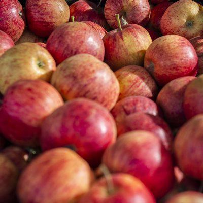 Farm Gate Market Fruit