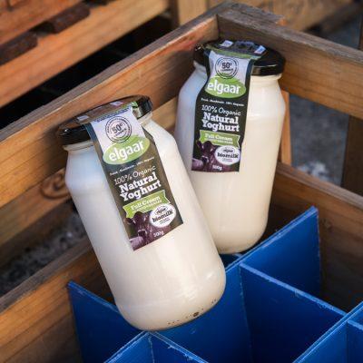 Elgaar Farm Dairy yoghurt