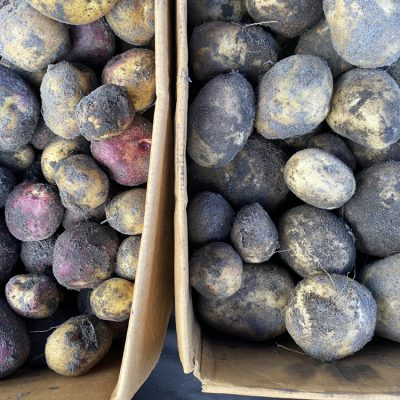 Rockhill Estate Other Fresh Produce 5kg potatoes