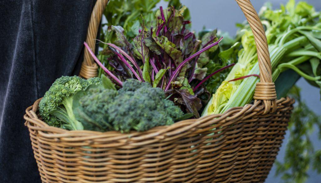Joua Vegie Box Brassica