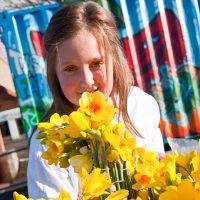 jackson's daffodils
