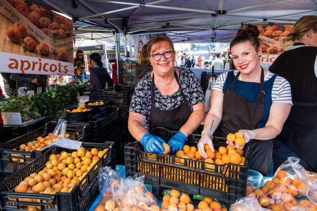 farmgate-market-apricot-stall