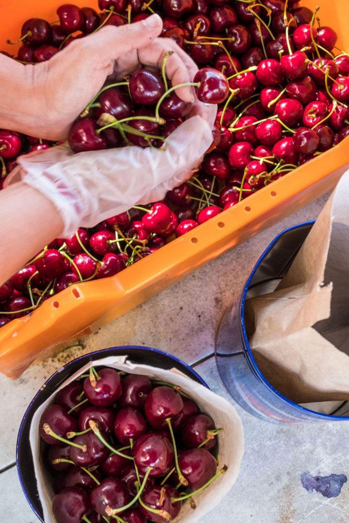 farmgate-market-cherries
