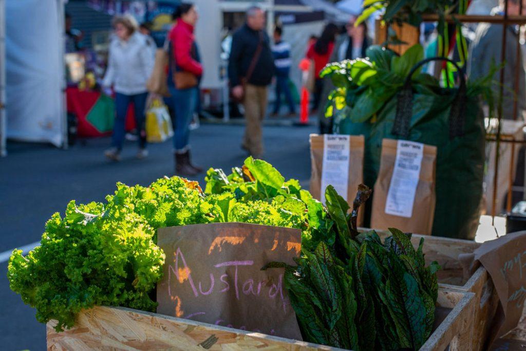 farmgate-market-mustard-greens