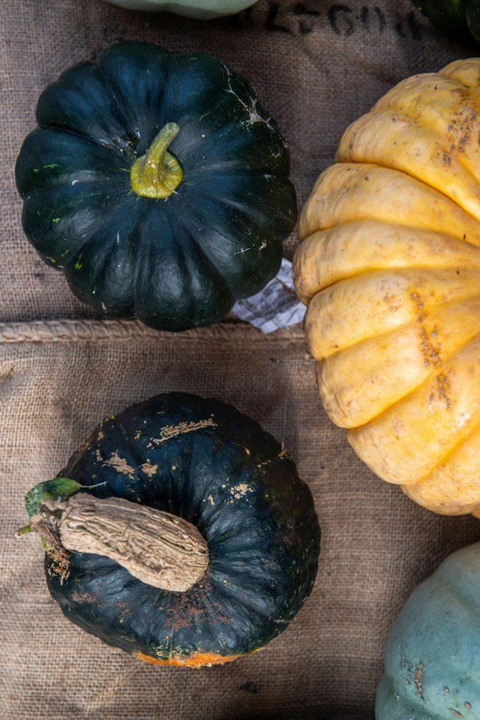 farmgate-market-pumpkins